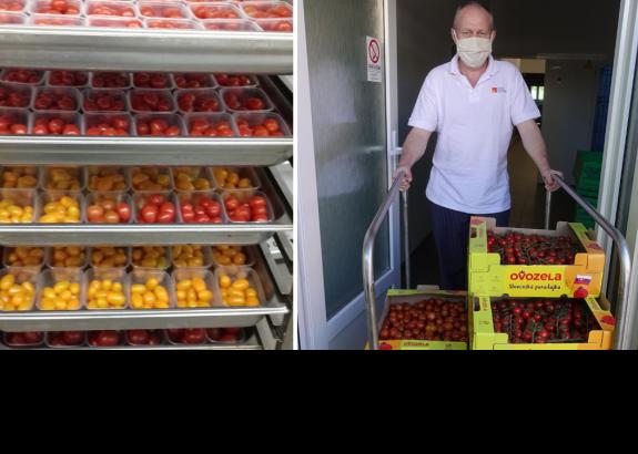 Pestovatelia zeleniny darovali nemocnici paradajky pre 400 pacientov