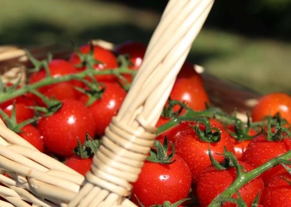 Pravidlá súťaže ,,Okomentuj a získaj košík paradajok