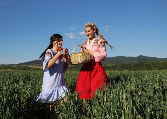 Slovenskí farmári chcú zmeniť paradajkový trh