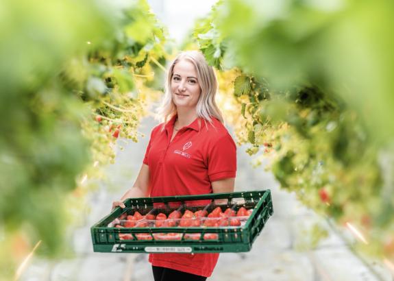 Slovenskí farmári pestujú výnimočné jahody: majú viac vitamínu C ako citrón či pomaranč