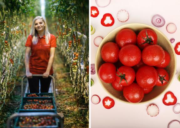 Prečo jesť paradajky aj vzimných mesiacoch