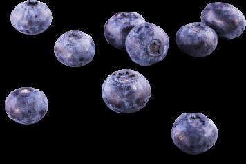Čučoriedky